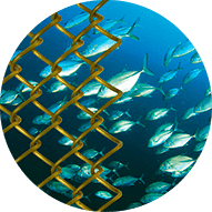 UR30® Wire for Aquaculture